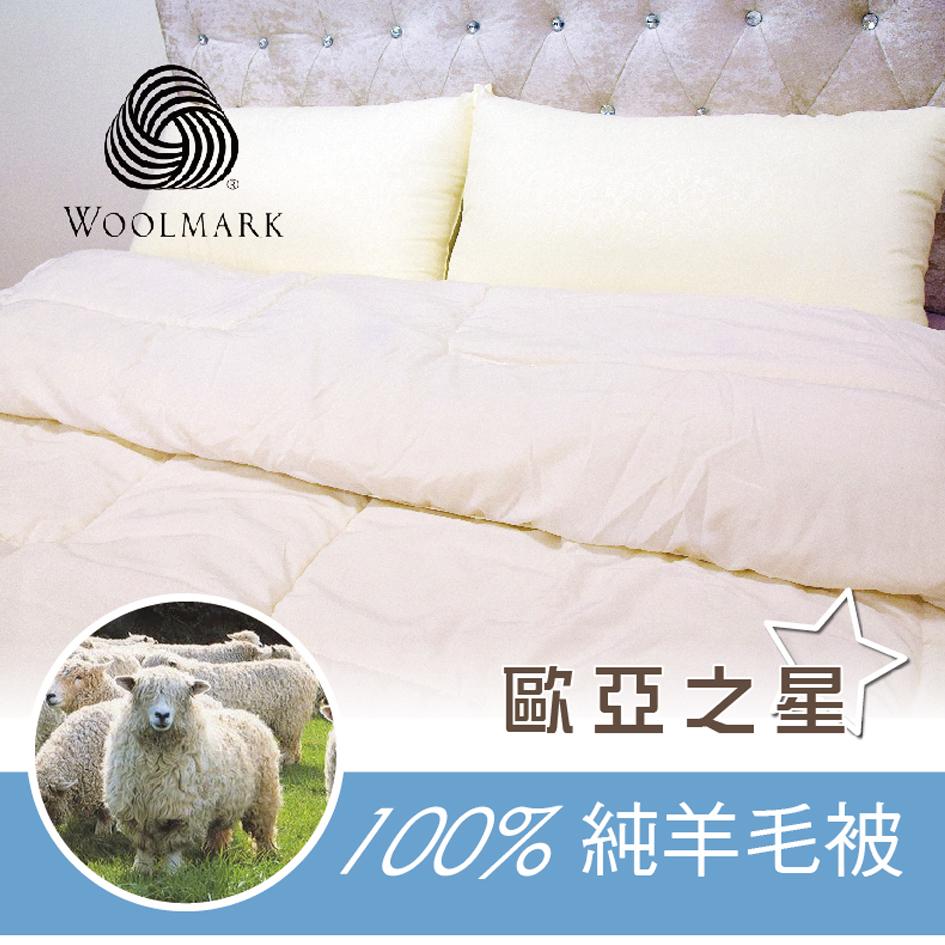 【歐亞之星】紐西蘭進口2.5kg重量級百分百羊毛被MIT