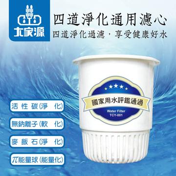 大家源 四道淨化科技濾心(二入裝) TCY-001
